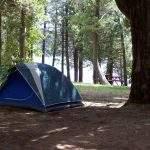 Carpa Petunia Bariloche Argentina Camping Rio Negro
