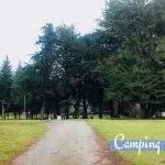 Parque Villa Maiten Argentina Camping Bariloche Rio Negro
